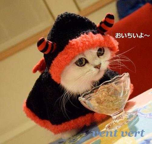 ハロ食事4