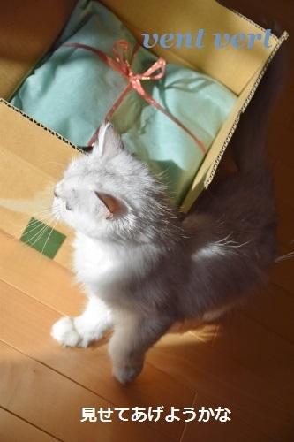 プレゼント9
