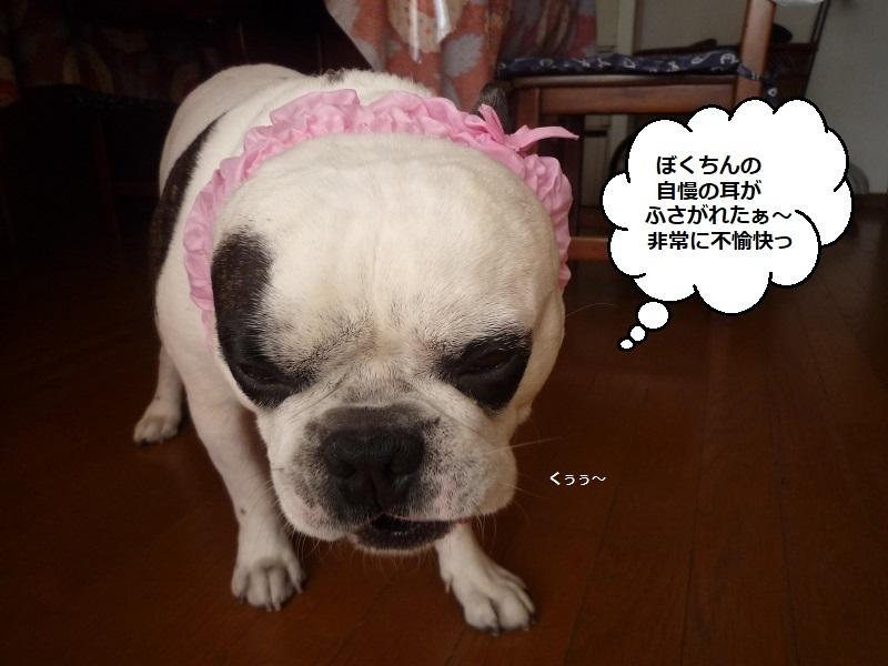 にこら201011to201108 157