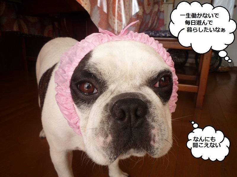 にこら201011to201108 158