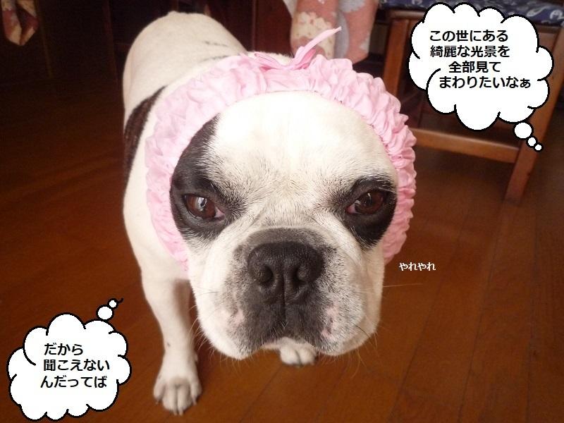 にこら201011to201108 160