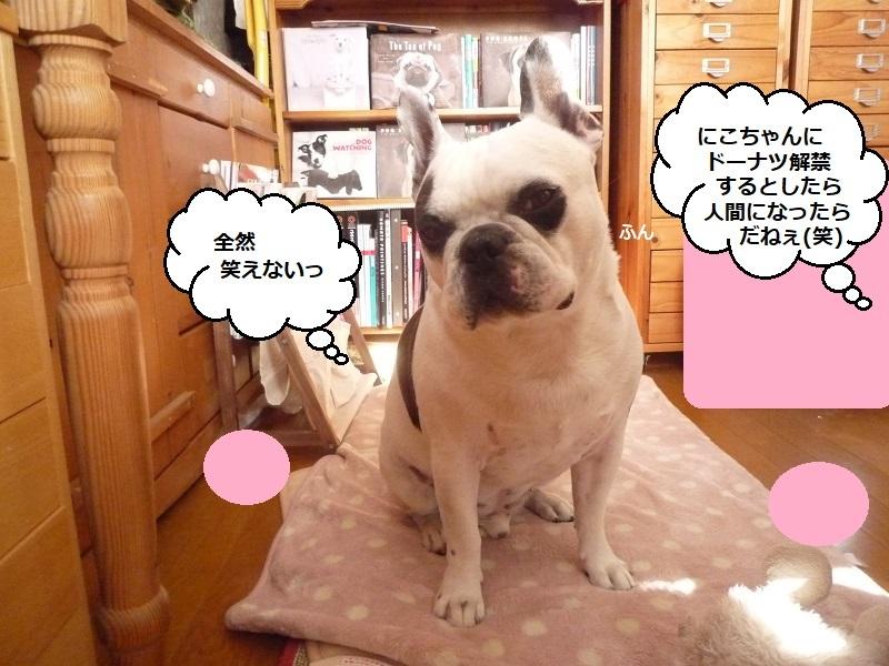 にこら201011to201108 219