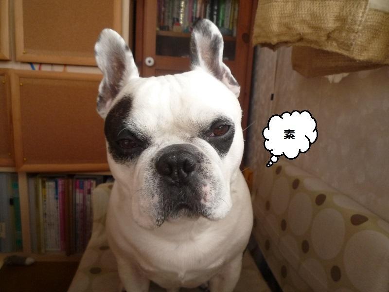 にこら201011to201108 173