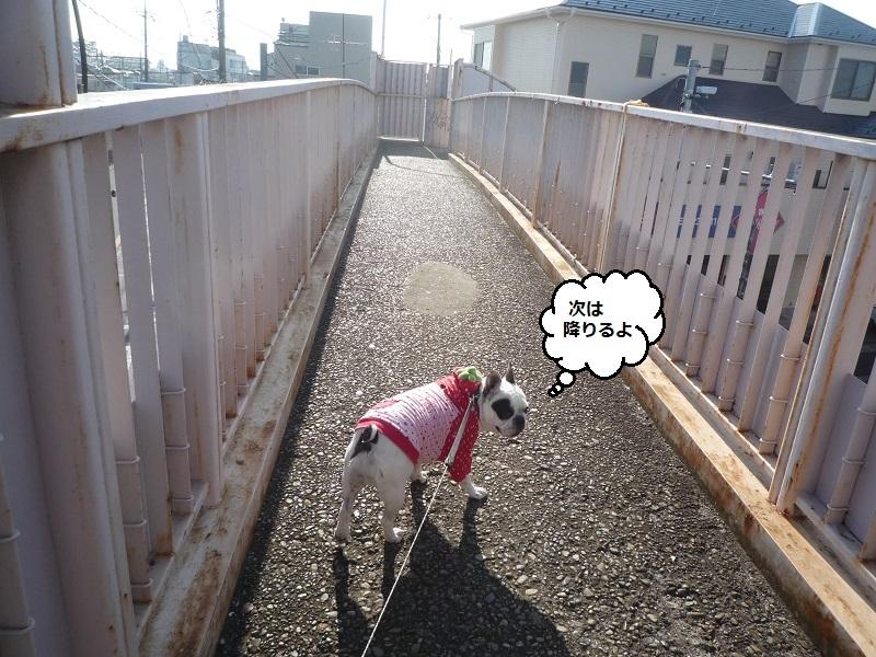 にこら201011to201108 359