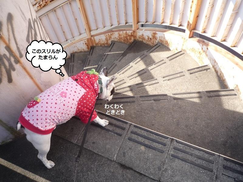 にこら201011to201108 361