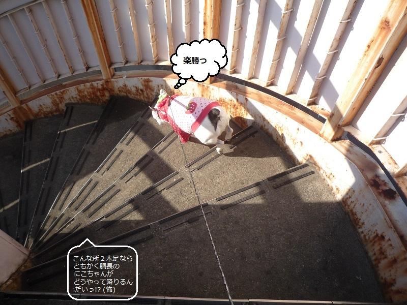 にこら201011to201108 363