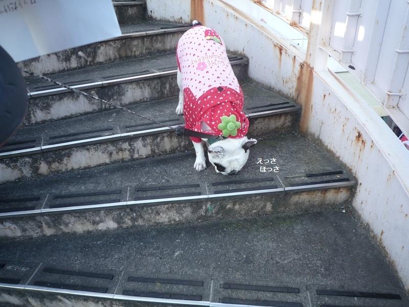にこら201011to201108 365