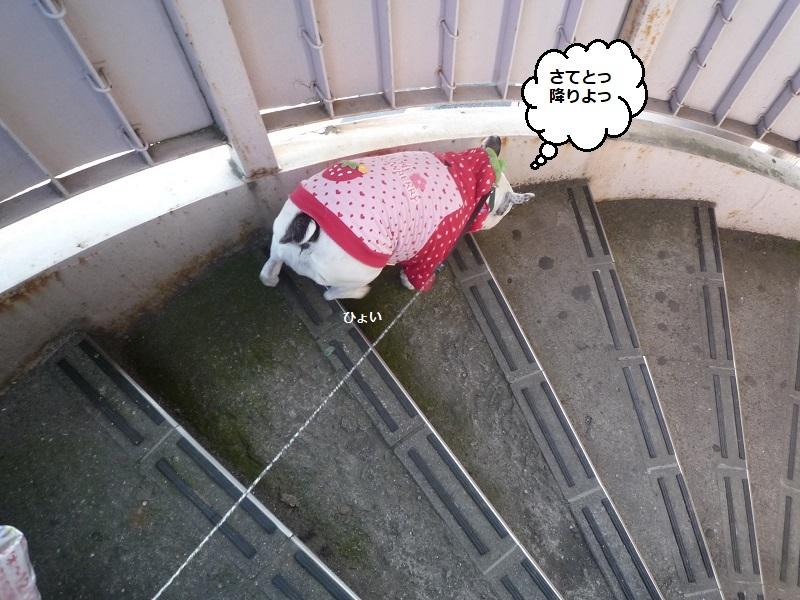 にこら201011to201108 370