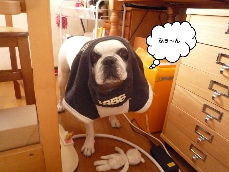 にこら201011to201108 489