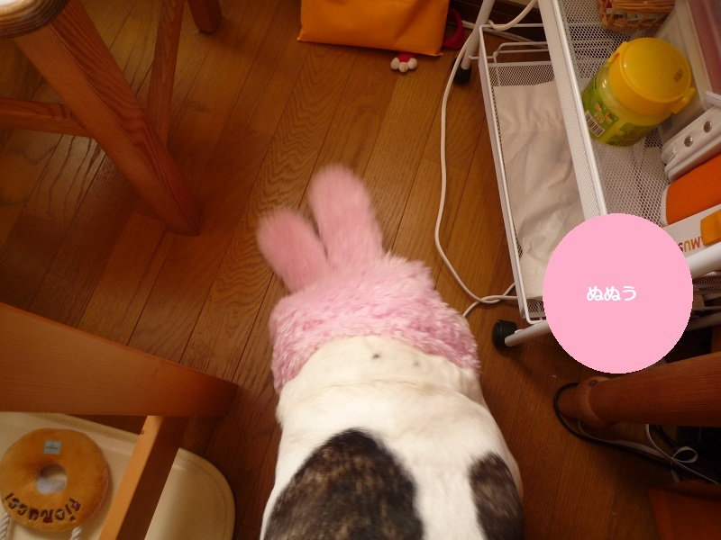 にこら201011to201108 492