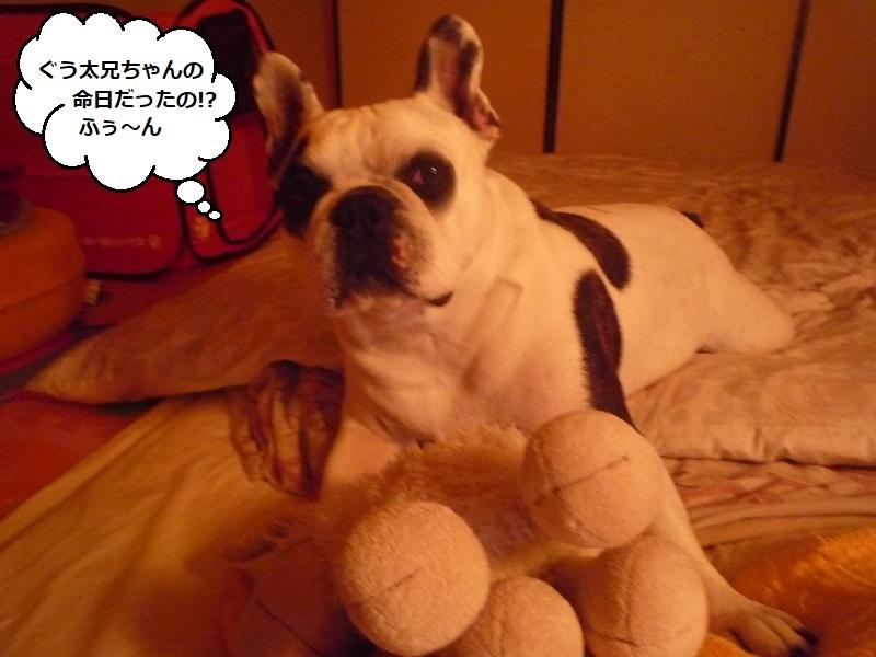 にこら201011to201108 509