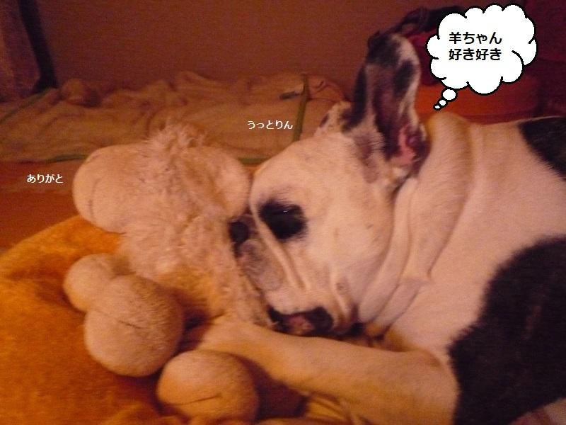 にこら201011to201108 514
