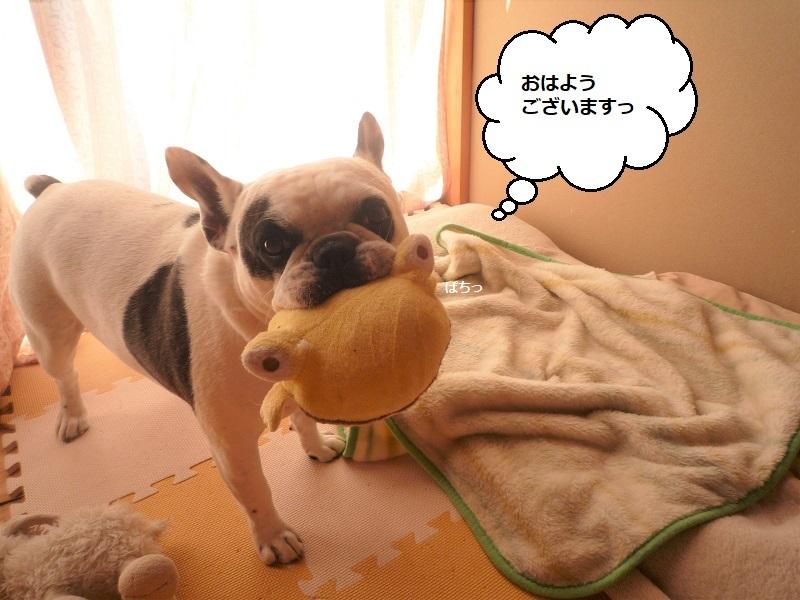 にこら201011to201108 519 (2)