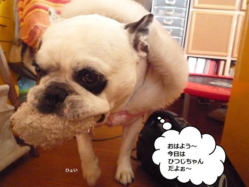 にこら201011to201108 663