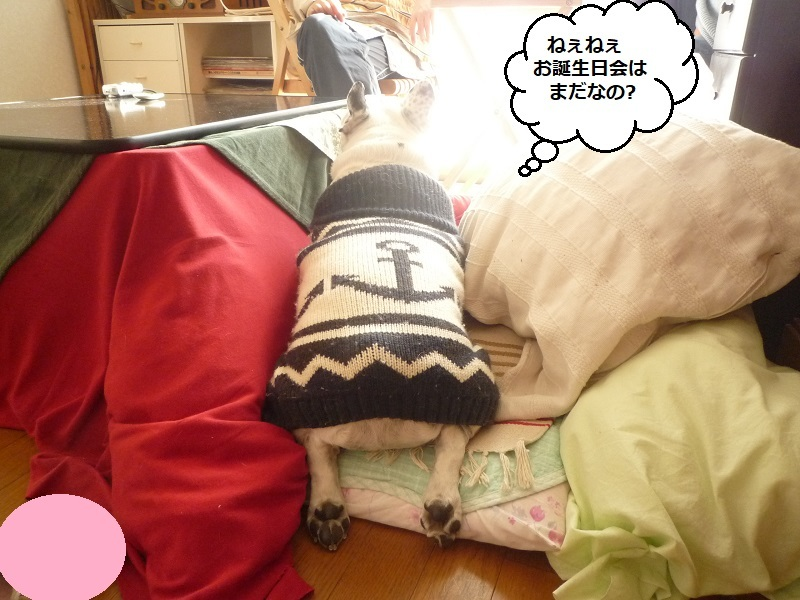 にこら201011to201108 681