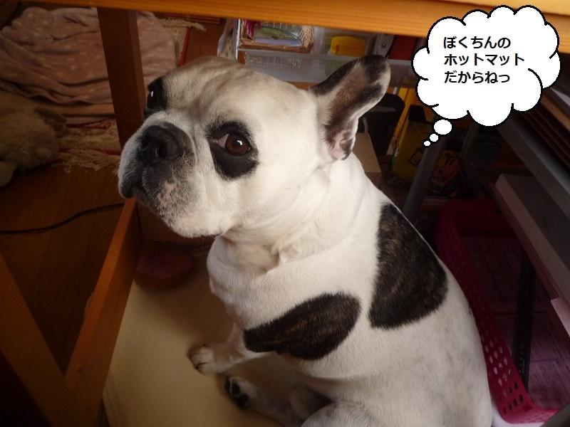 にこら201011to201108 701