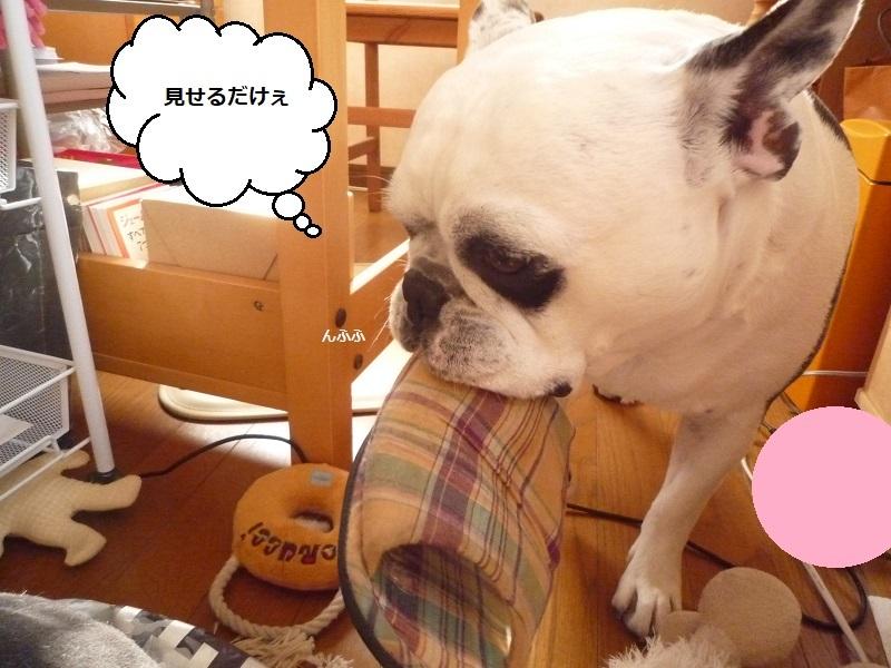 にこら201011to201108 711