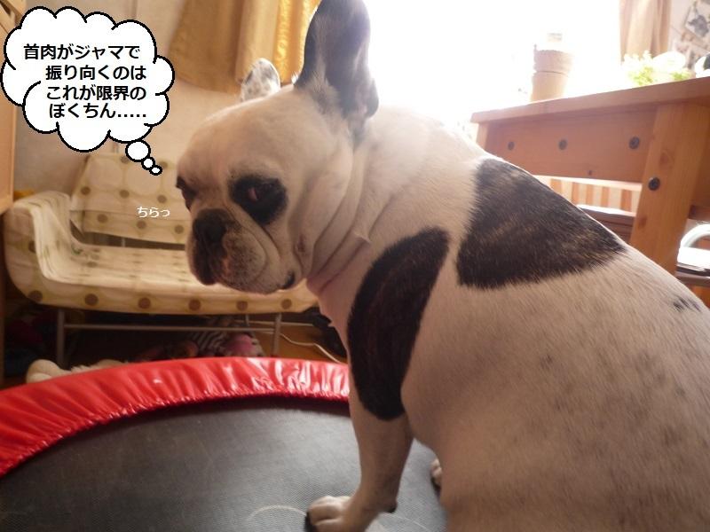 にこら201011to201108 998
