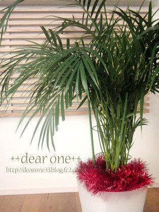 クリスマス171223_4