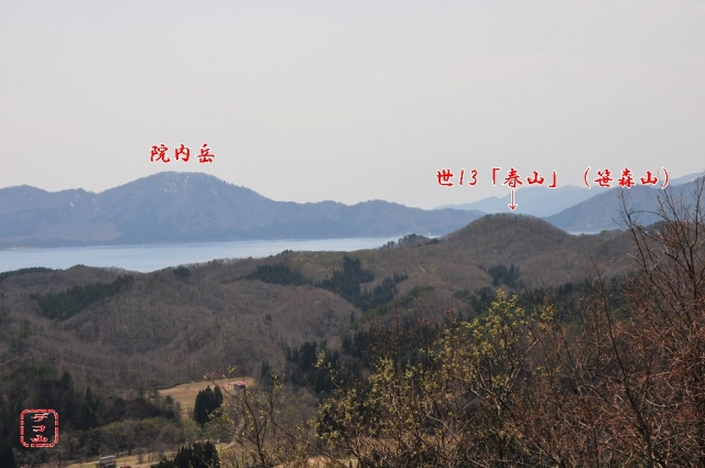 snb948rym_02.jpg