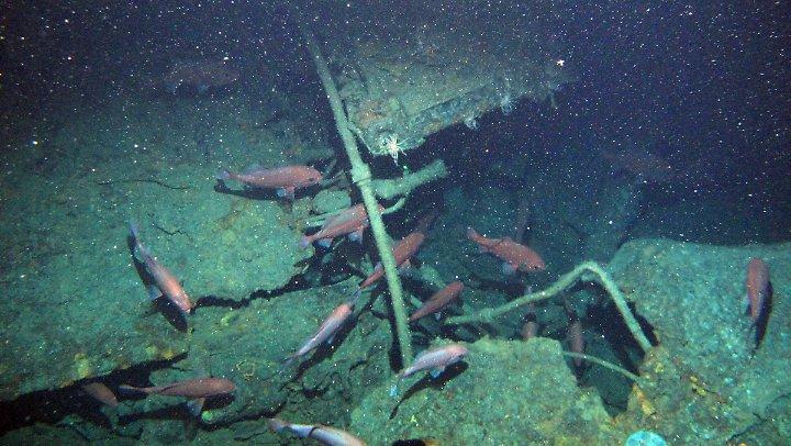 【第一次世界大戦】謎の失踪、豪潜水艦第1号「AE1」100年経てついに発見!2-1