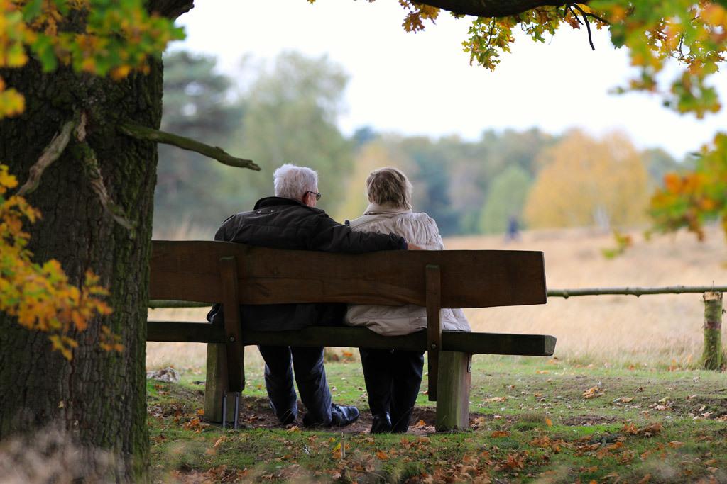高齢者医療介護