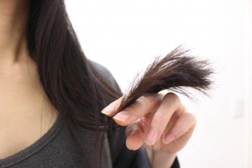 地毛,髪の毛,髪の色,ヘアスタイル