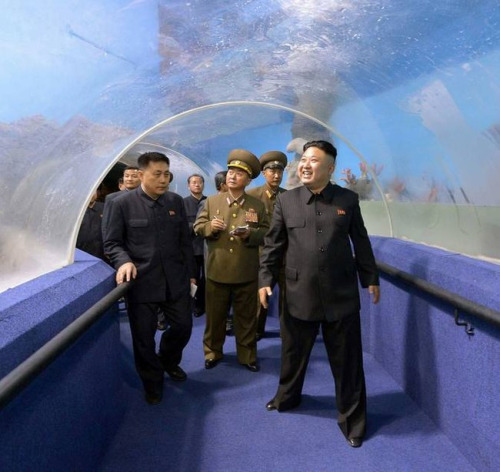 【プーチン氏に書簡】北朝鮮「アメリカを核攻撃する用意が整った」15-10