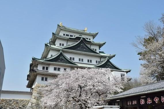 【名古屋城の復元めぐり論争】史実に忠実か?エレベーターは必要か?