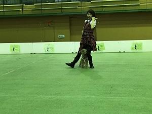 171014岡田ロッキー