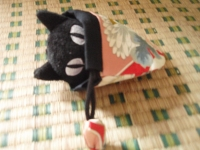 黒猫でーす!