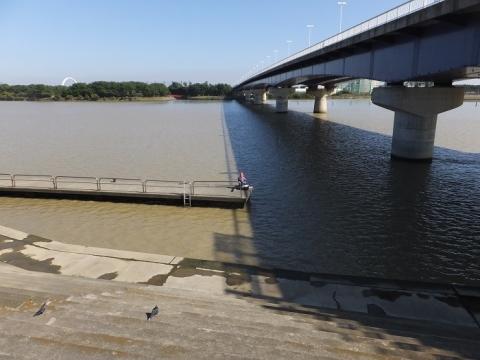 トラスコ湘南大橋上流の桟橋