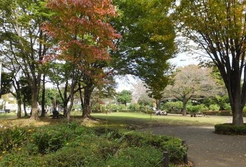 東京都町田市・忠生公園