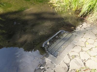 忠生公園・がにやら池