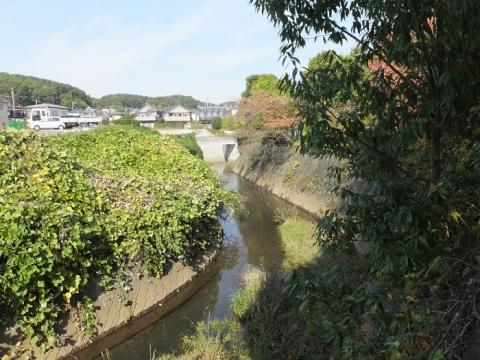 鶴見川旧河道・町田市山崎町