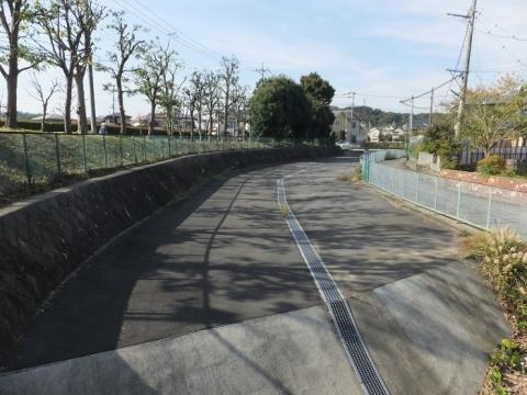 新高木橋より鶴見川旧河道上流を望む