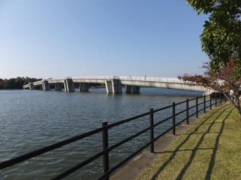 彩湖の管理橋
