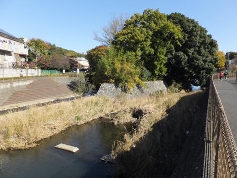 鶴見川・新鎧橋上流
