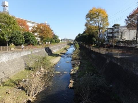 新鎧橋より鶴見川下流を望む