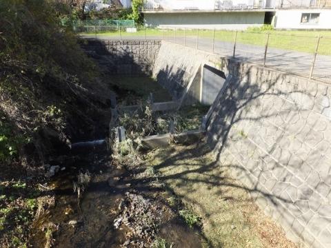 鶴見川旧河道入口の越流堤