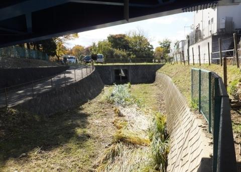 鶴見川の旧河道・鎧橋付近