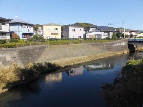 鶴見川左岸の護岸・丸山橋上流