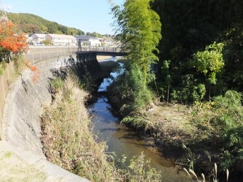 鶴見川旧河道・本村橋付近