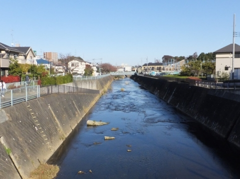 鶴見川・小田急線鶴川駅付近
