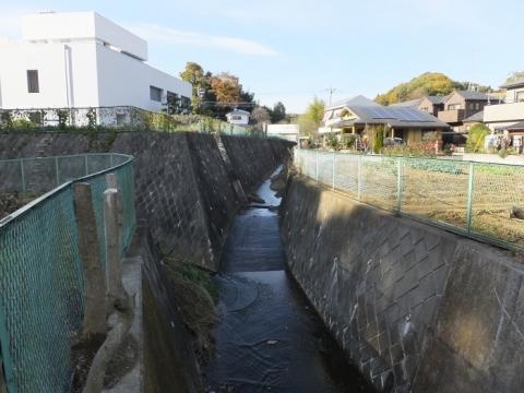 鶴見川(小山田川)