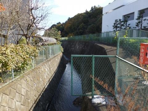 鶴見川(小山田川)・バス停小山田付近