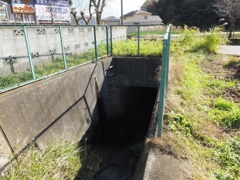鶴見川(小山田川)支流