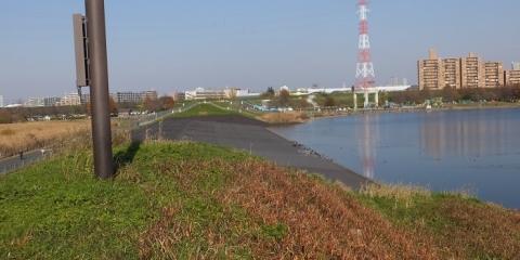荒川第一調節池・流入堤