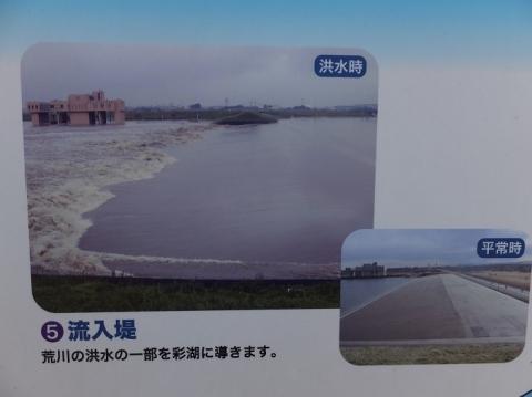 洪水時の流入堤