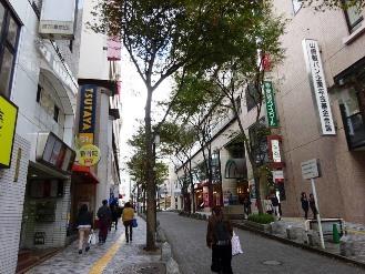 ichikawa6.jpg